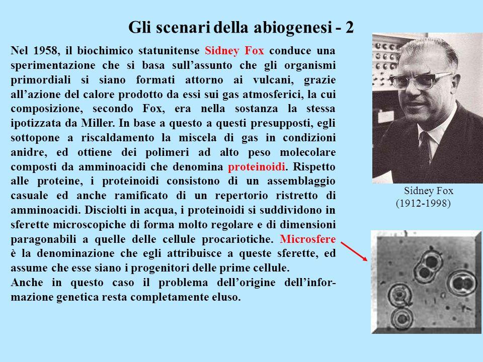 Gli scenari della abiogenesi - 2