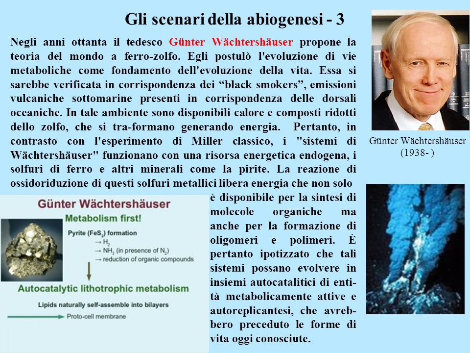 Gli scenari della abiogenesi - 3