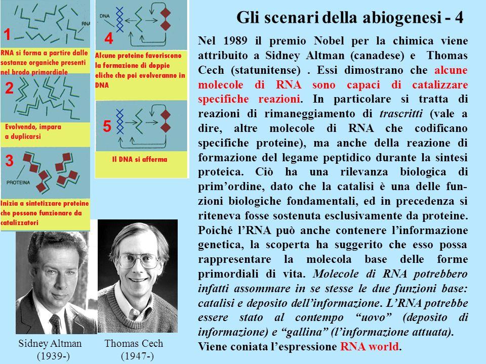 Gli scenari della abiogenesi - 4