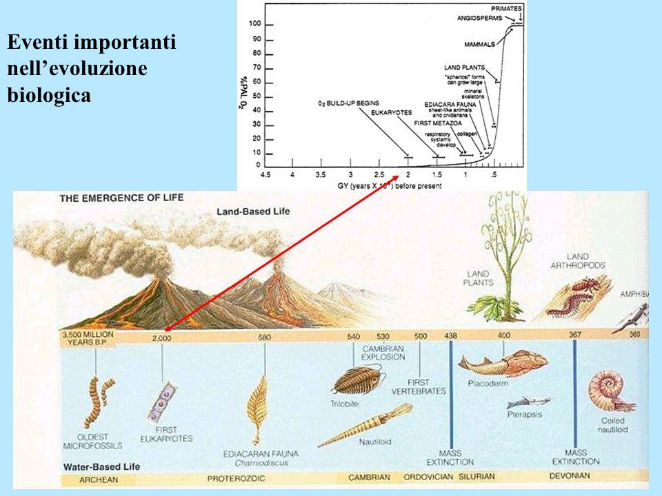 Eventi importanti nell'evoluzione biologica