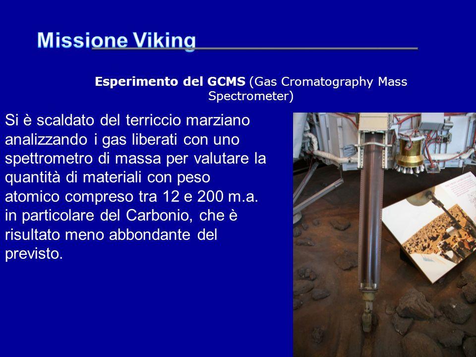Esperimento del GCMS (Gas Cromatography Mass Spectrometer)
