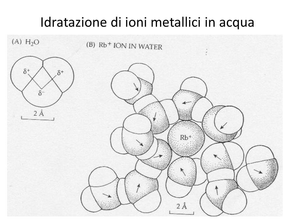 Idratazione di ioni metallici in acqua