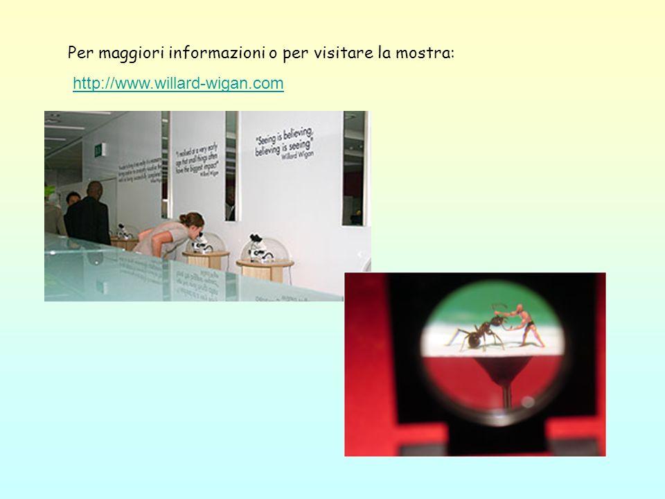 Per maggiori informazioni o per visitare la mostra: