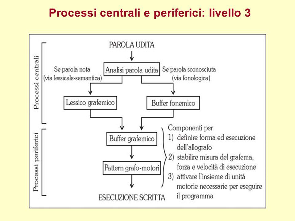 Processi centrali e periferici: livello 3