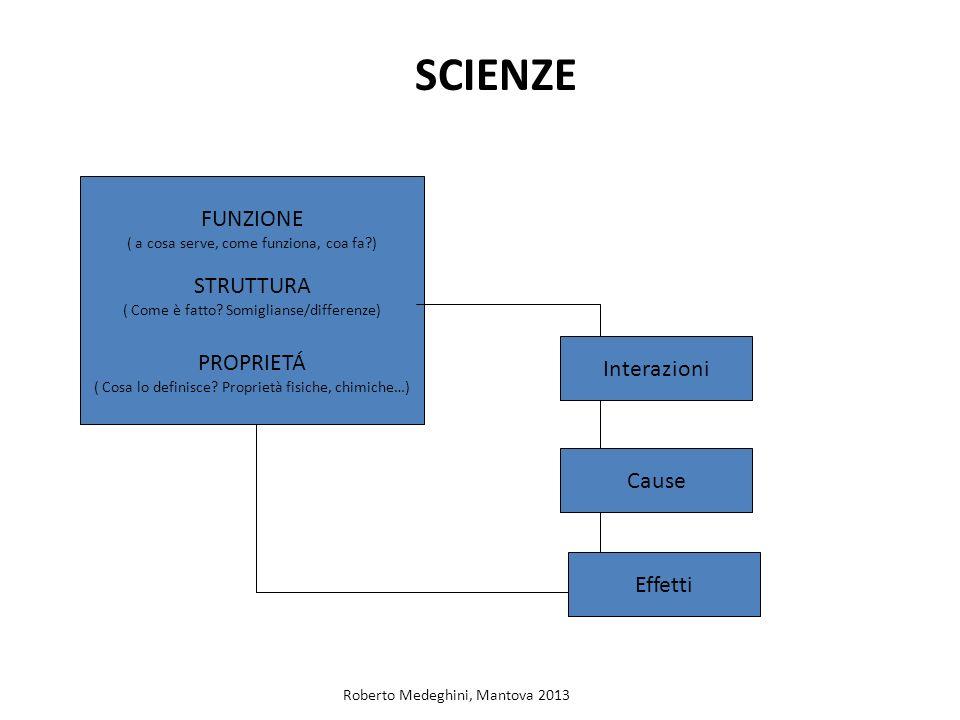 SCIENZE FUNZIONE STRUTTURA PROPRIETÁ Interazioni Cause Effetti