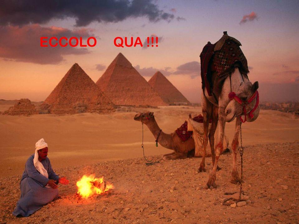 ECCOLO QUA !!!