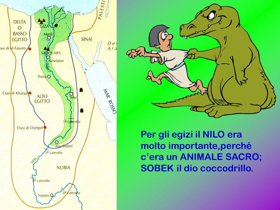 Per gli egizi il NILO era molto importante,perché c'era un ANIMALE SACRO; SOBEK il dio coccodrillo.