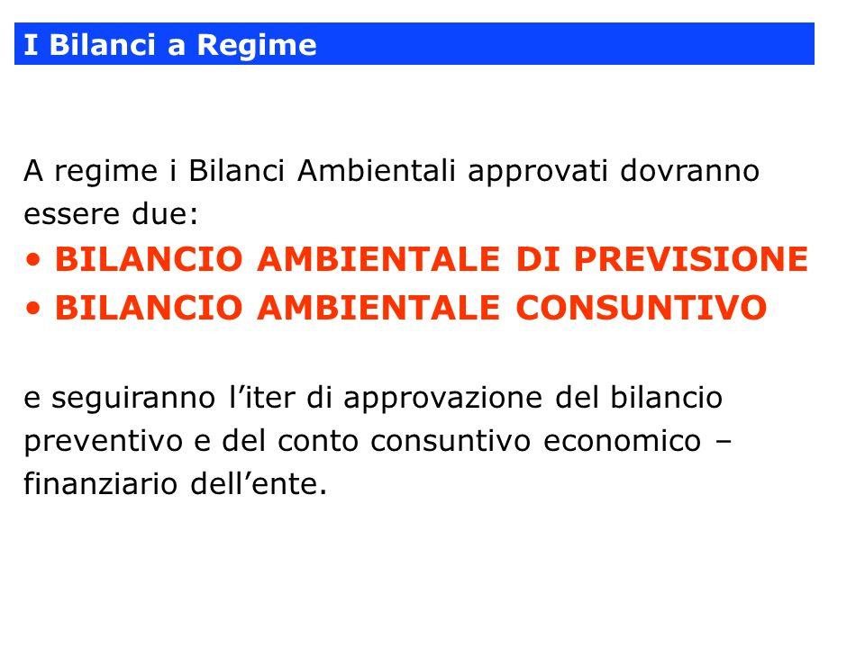 A regime i Bilanci Ambientali approvati dovranno essere due: