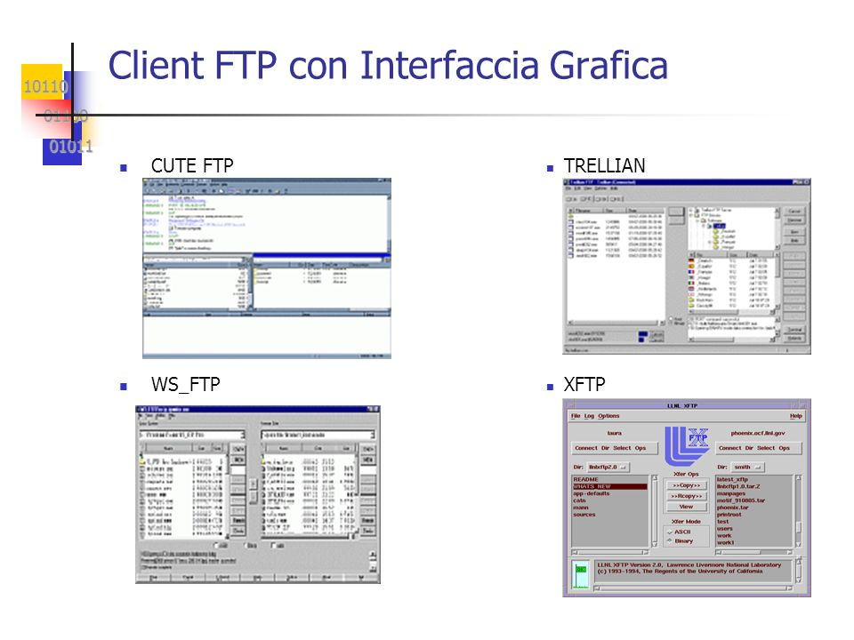 Client FTP con Interfaccia Grafica