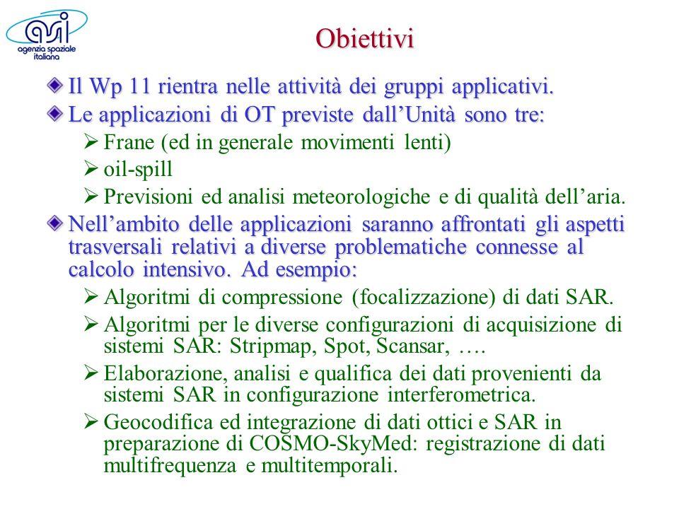 Obiettivi Il Wp 11 rientra nelle attività dei gruppi applicativi.