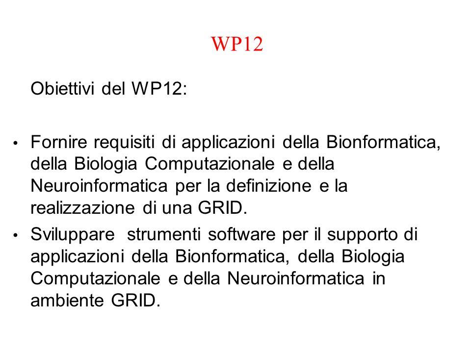 WP12 Obiettivi del WP12: