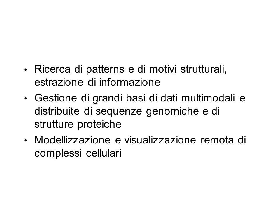 Ricerca di patterns e di motivi strutturali, estrazione di informazione