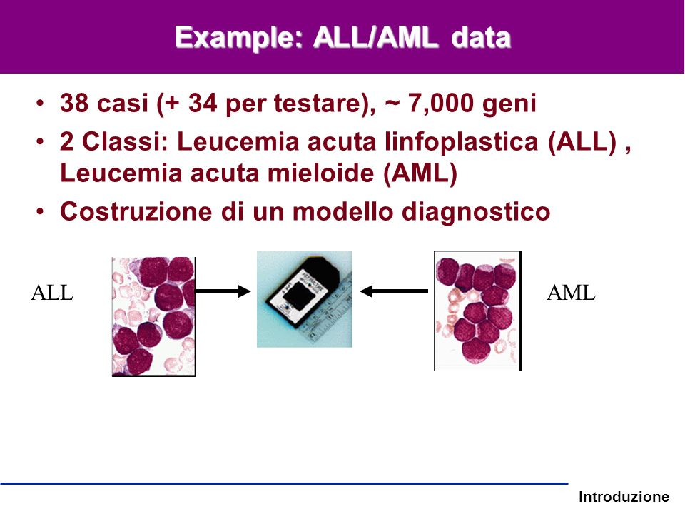 Example: ALL/AML data 38 casi (+ 34 per testare), ~ 7,000 geni