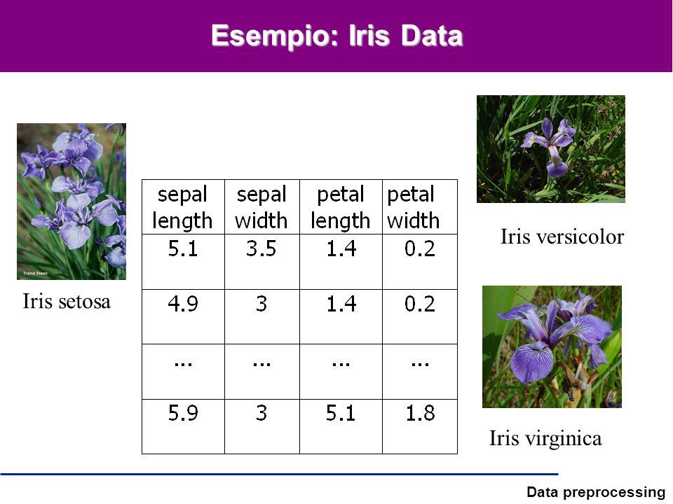 Esempio: Iris Data Iris versicolor Iris setosa Iris virginica