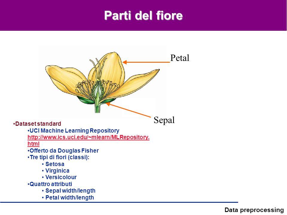 Parti del fiore Petal Sepal Dataset standard