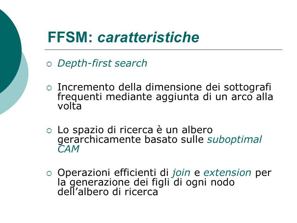 FFSM: caratteristiche