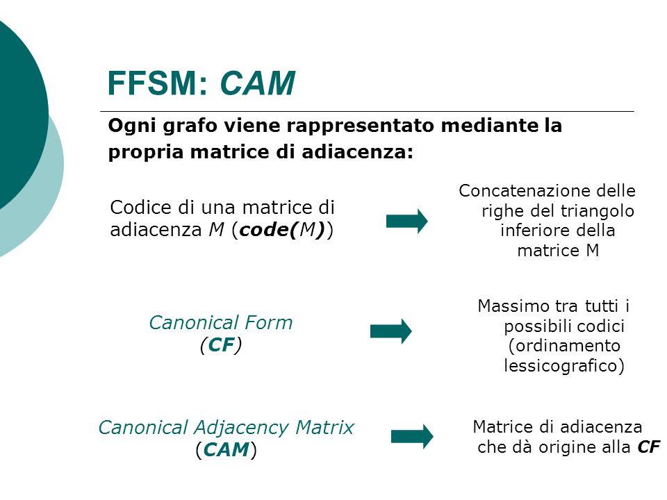 FFSM: CAMOgni grafo viene rappresentato mediante la propria matrice di adiacenza: Concatenazione delle righe del triangolo inferiore della matrice M.