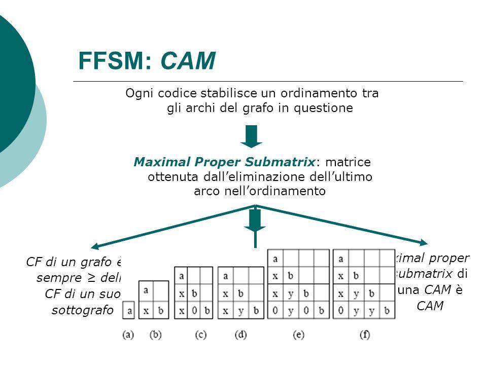FFSM: CAM Ogni codice stabilisce un ordinamento tra gli archi del grafo in questione.