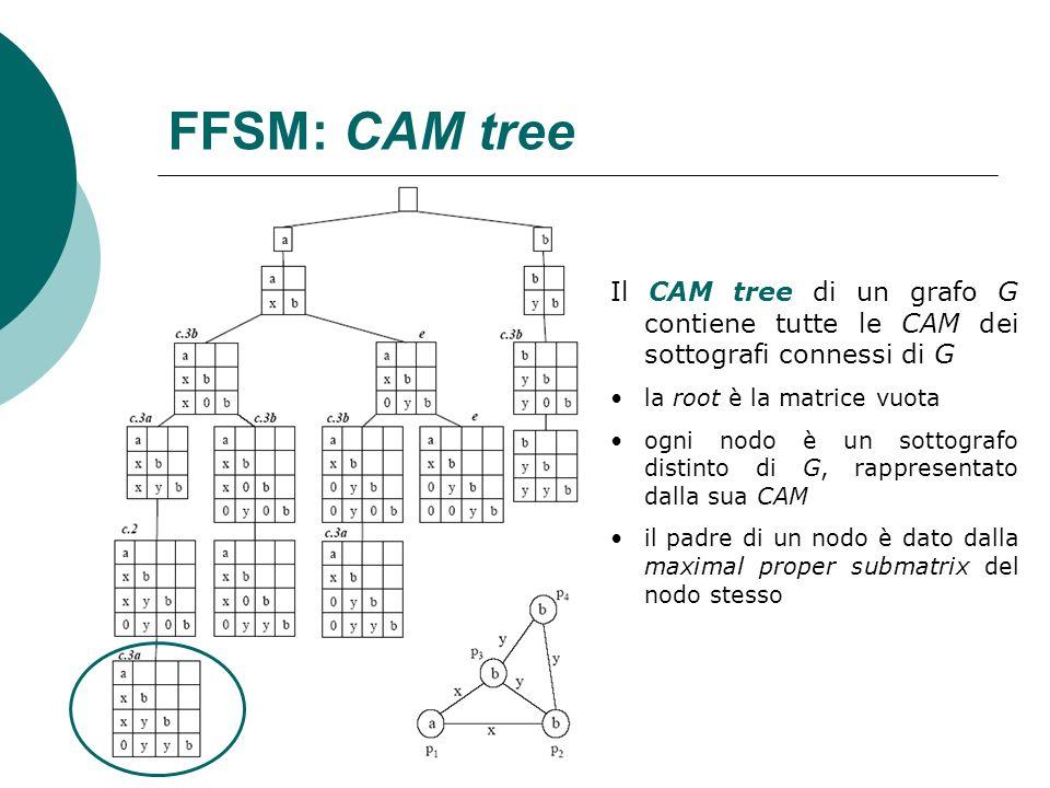 FFSM: CAM tree Il CAM tree di un grafo G contiene tutte le CAM dei sottografi connessi di G. la root è la matrice vuota.