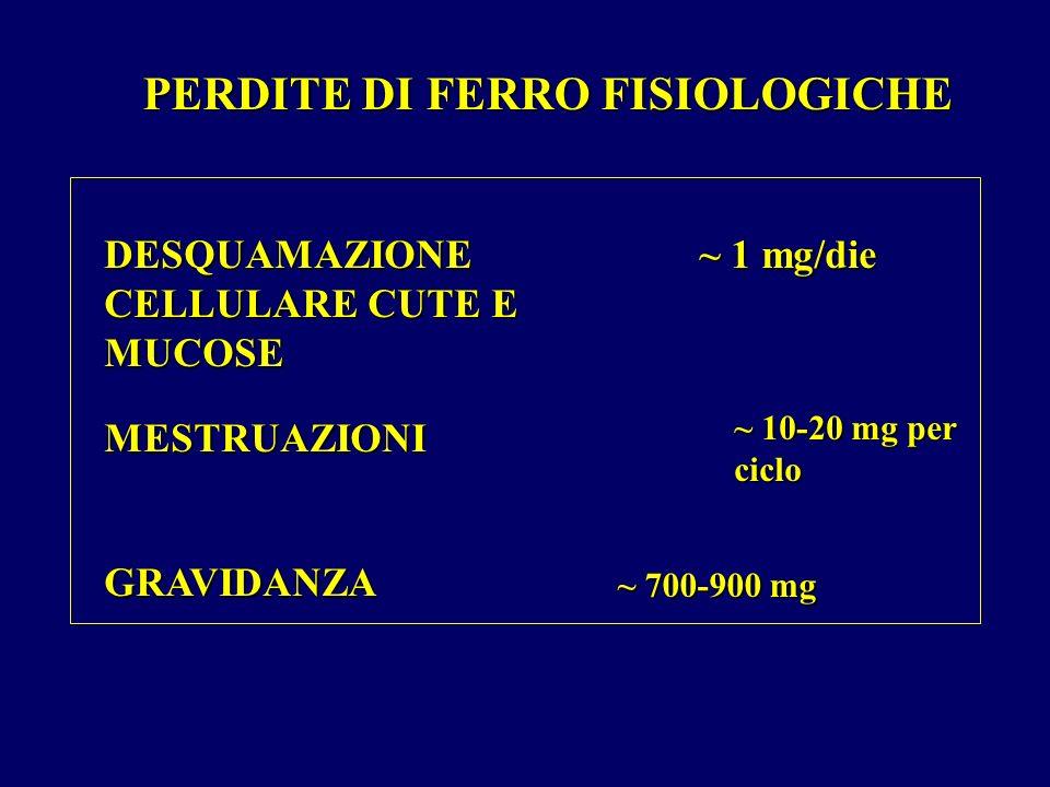 PERDITE DI FERRO FISIOLOGICHE