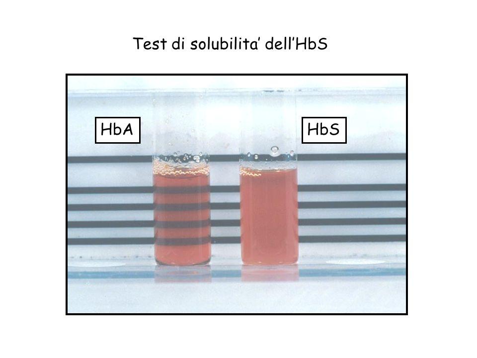 Test di solubilita' dell'HbS
