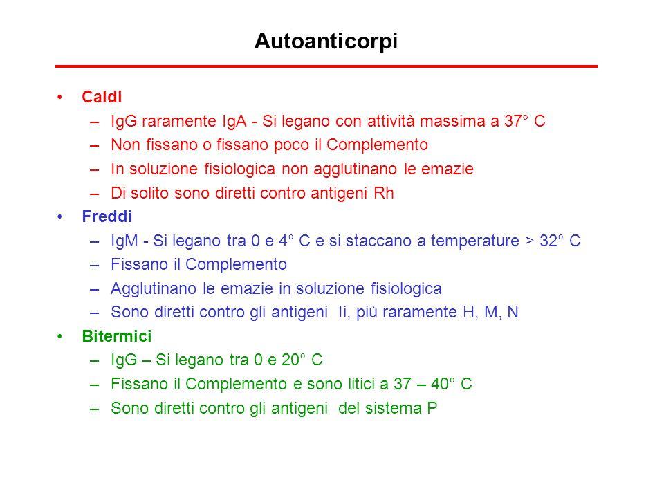 Autoanticorpi Caldi. IgG raramente IgA - Si legano con attività massima a 37° C. Non fissano o fissano poco il Complemento.