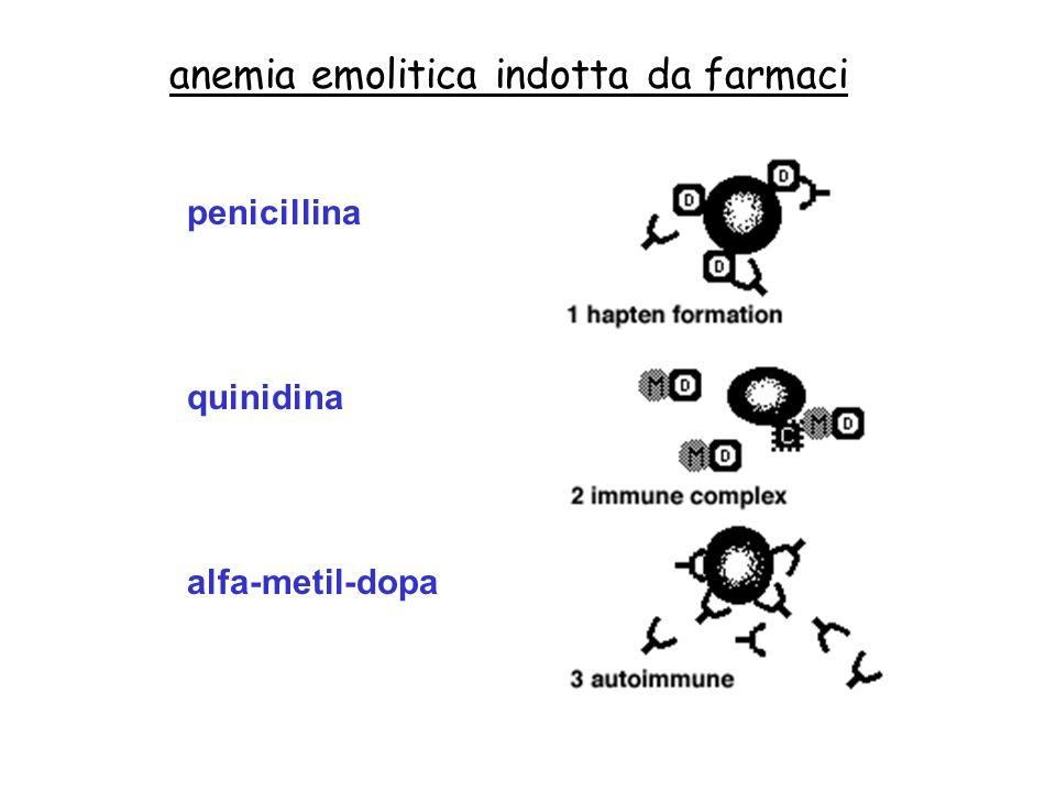 anemia emolitica indotta da farmaci