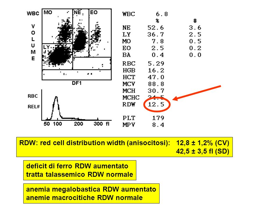 RDW: red cell distribution width (anisocitosi): 12,8 ± 1,2% (CV)