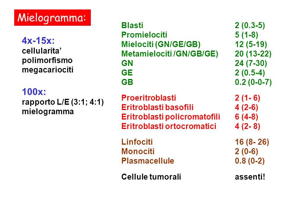 Mielogramma: 4x-15x: 100x: Blasti 2 (0.3-5) Promielociti 5 (1-8)