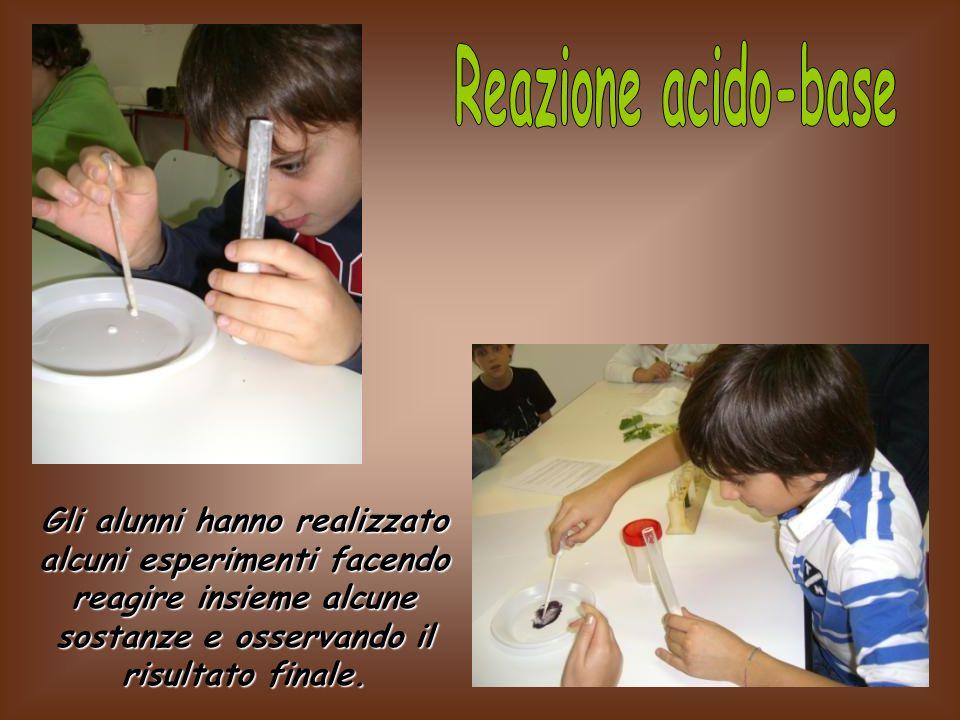Reazione acido-base Gli alunni hanno realizzato alcuni esperimenti facendo reagire insieme alcune sostanze e osservando il risultato finale.
