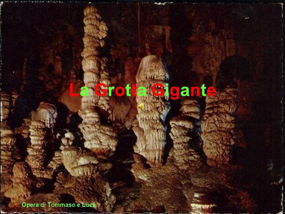 La Grotta Gigante Opera di Tommaso e Luca