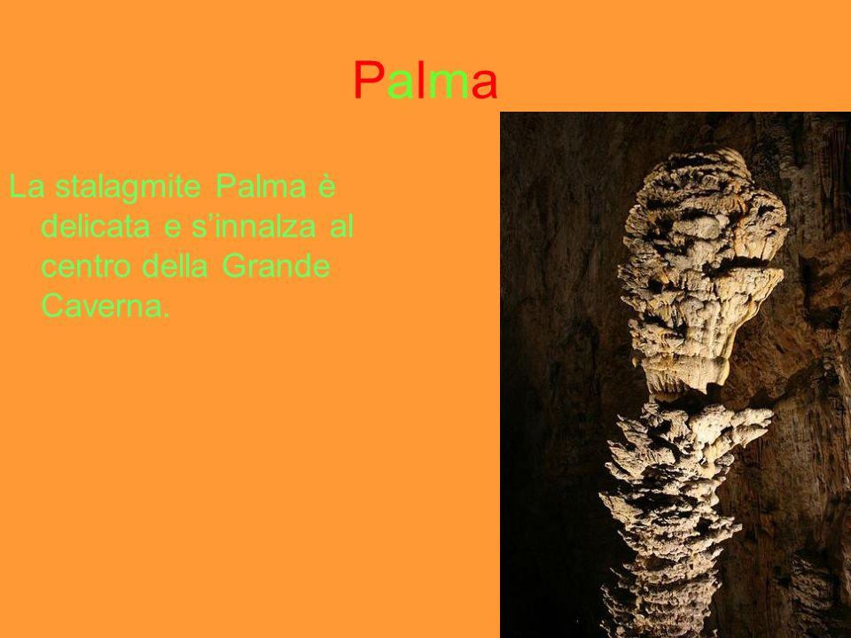 Palma La stalagmite Palma è delicata e s'innalza al centro della Grande Caverna.