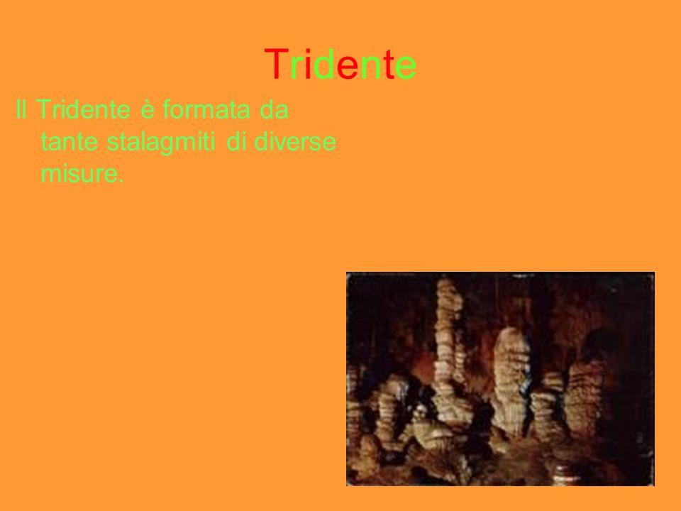 Tridente Il Tridente è formata da tante stalagmiti di diverse misure.