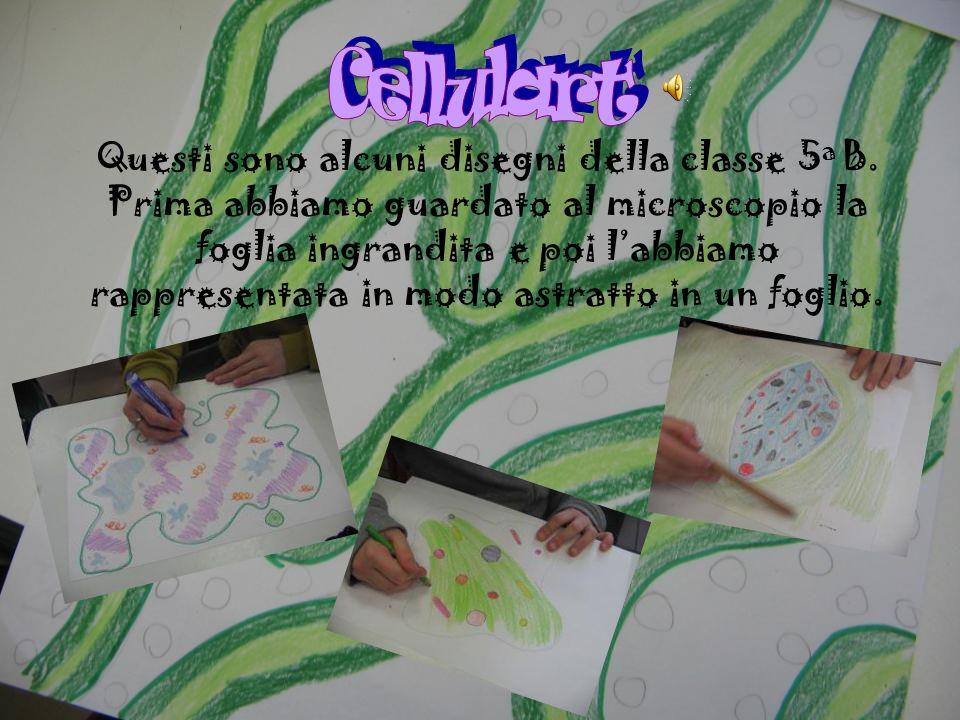 Cellulart