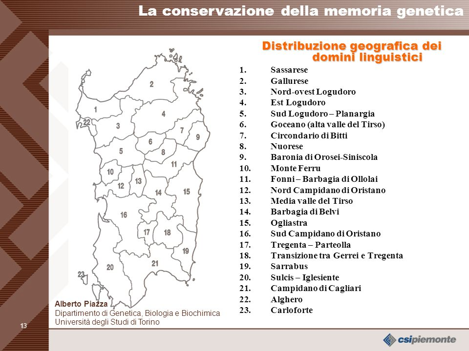 Distribuzione geografica dei domini linguistici