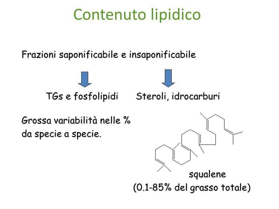 Contenuto lipidico Frazioni saponificabile e insaponificabile