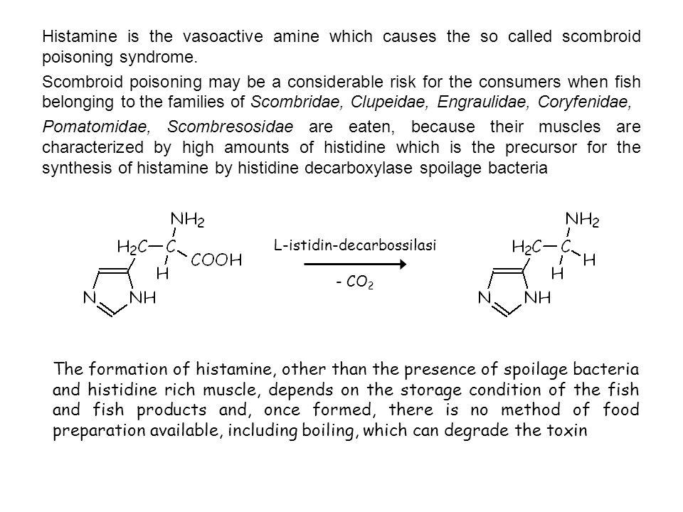 L-istidin-decarbossilasi