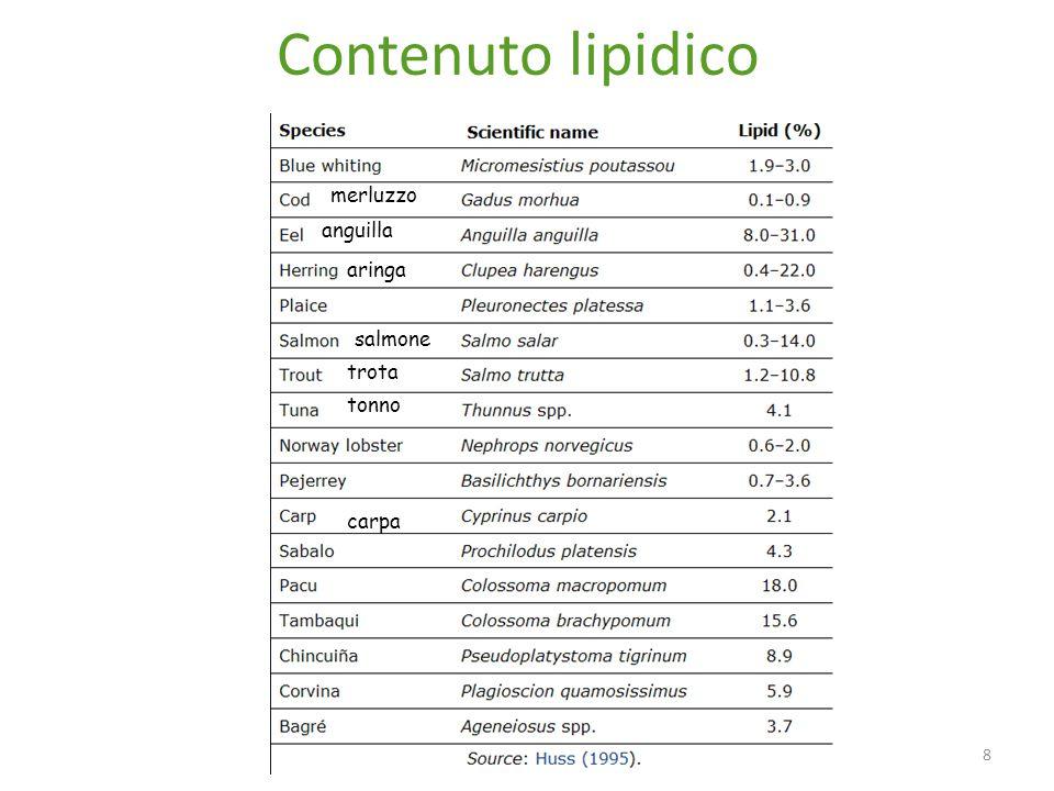 Contenuto lipidico merluzzo anguilla aringa salmone trota tonno carpa