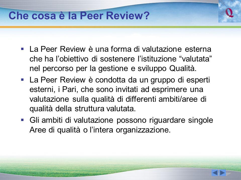 Che cosa è la Peer Review