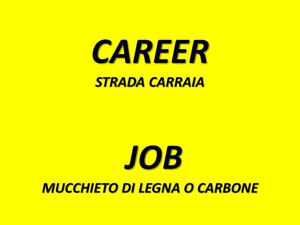 CAREER STRADA CARRAIA JOB MUCCHIETO DI LEGNA O CARBONE