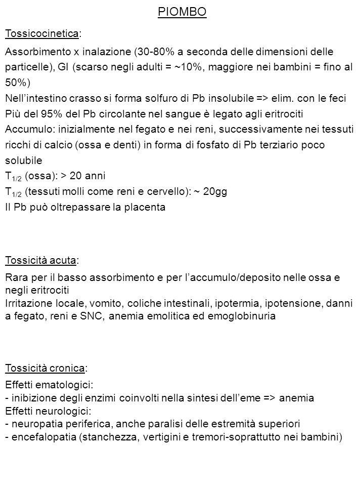 PIOMBO Tossicocinetica: