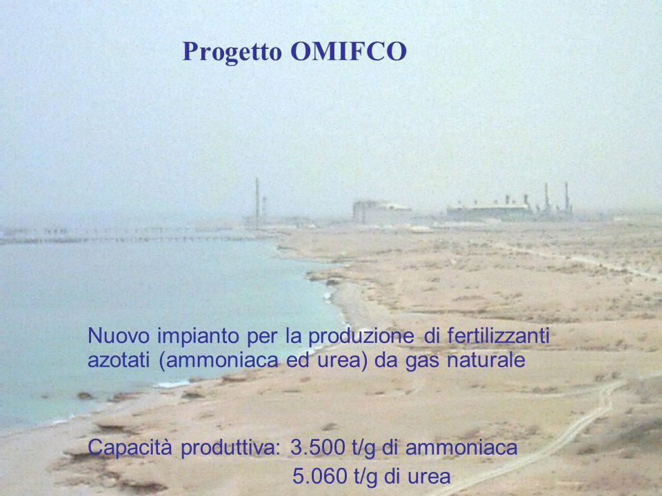 Progetto OMIFCO Nuovo impianto per la produzione di fertilizzanti azotati (ammoniaca ed urea) da gas naturale.