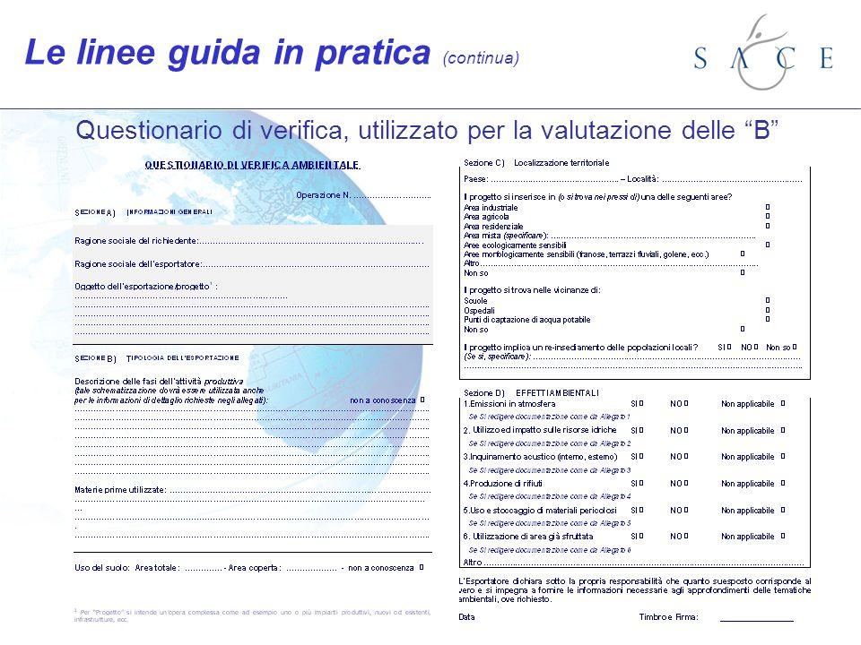 Questionario di verifica, utilizzato per la valutazione delle B