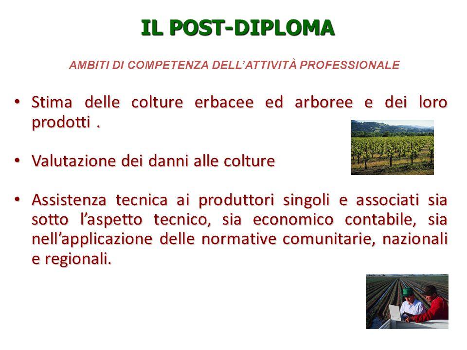AMBITI DI COMPETENZA DELL'ATTIVITÀ PROFESSIONALE