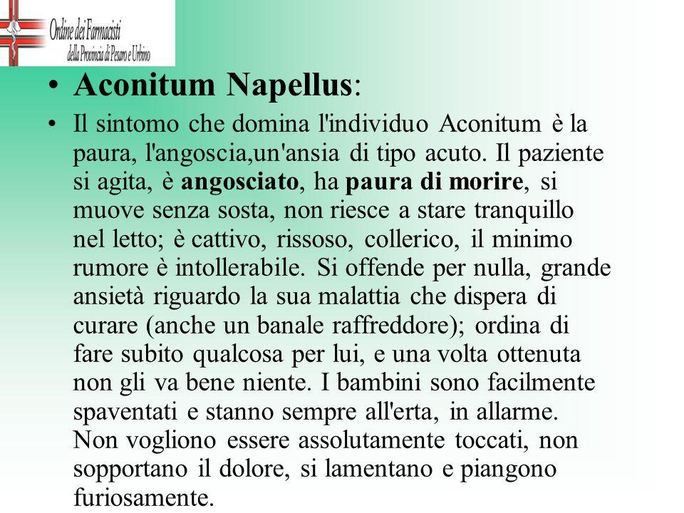 Aconitum Napellus: