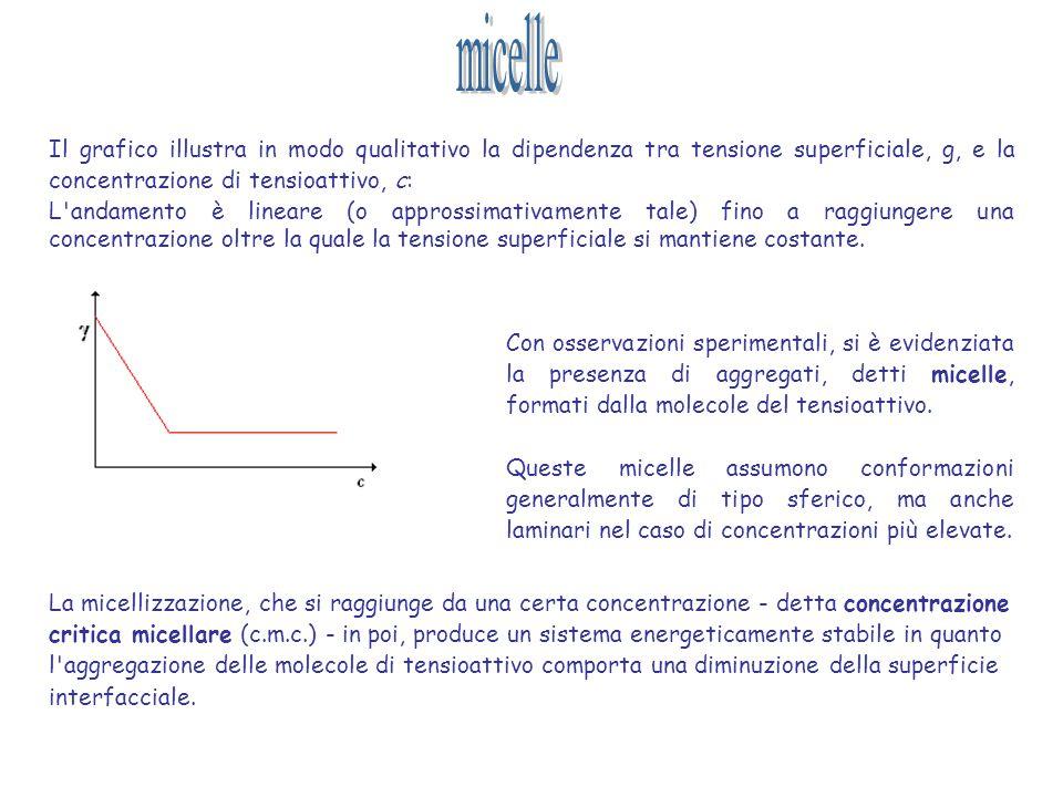 micelle Il grafico illustra in modo qualitativo la dipendenza tra tensione superficiale, g, e la concentrazione di tensioattivo, c: