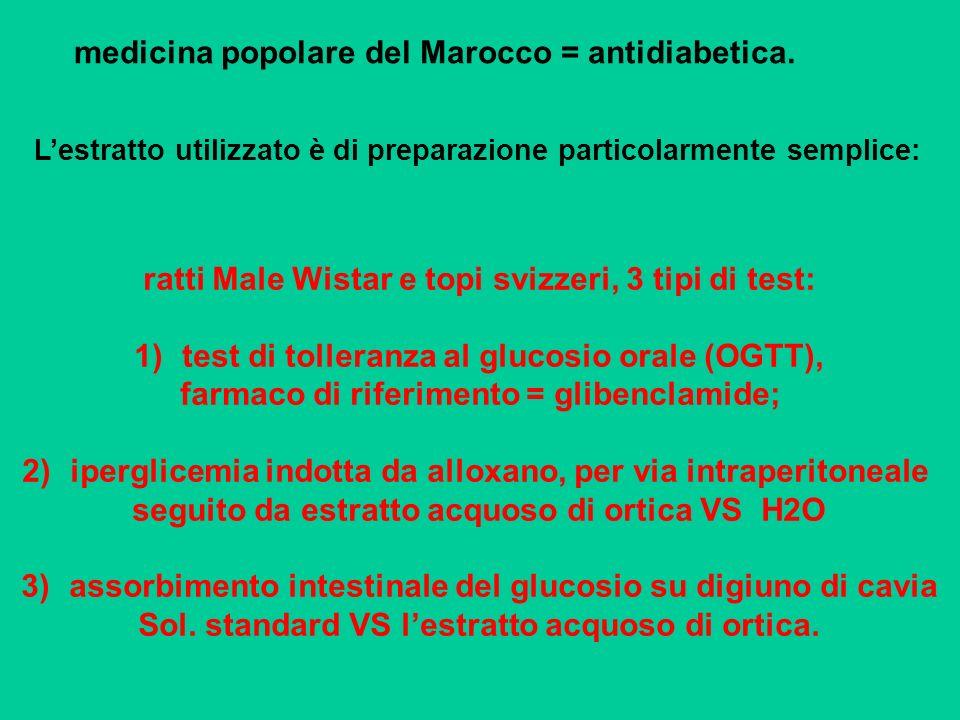 medicina popolare del Marocco = antidiabetica.