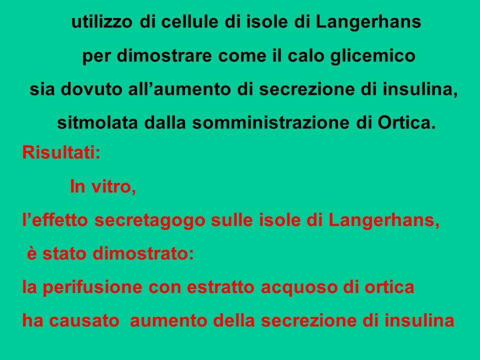 utilizzo di cellule di isole di Langerhans