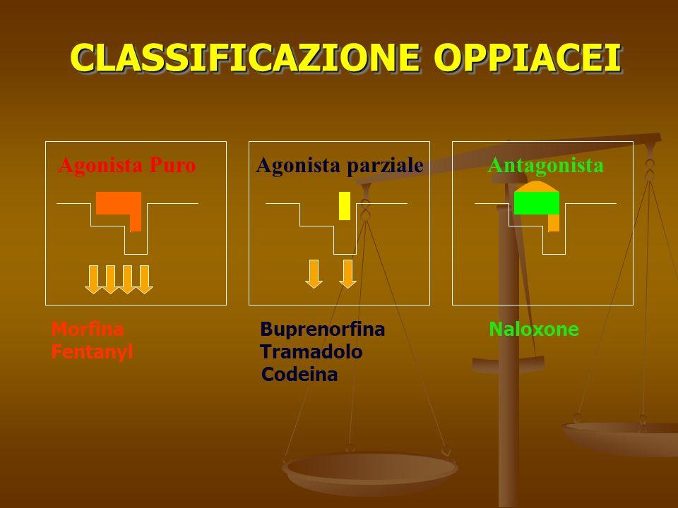 CLASSIFICAZIONE OPPIACEI