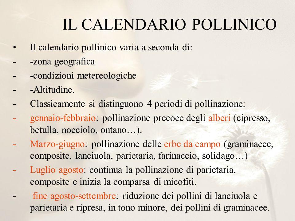 IL CALENDARIO POLLINICO
